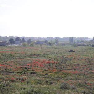 Els terrenys on està previst instal·lar el parc fotovoltaic als afores de Balàfia, a Lleida capital.