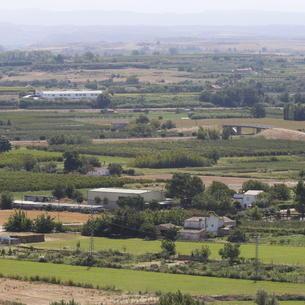 Vista panoràmica d'una part de l'Horta de Lleida.