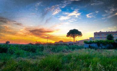 arrib el bon temps i les vesprades a Alcarràs son espectaculars. no us les podeu perdre