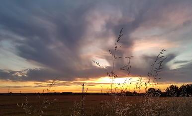 posta de sol de primavera,