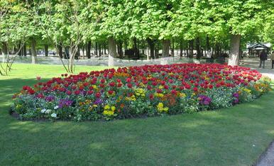 Jardins de Luxemburg de París.
