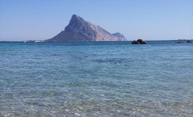 Vacances, relax, platja, Sardenya