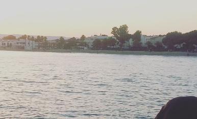 Foto realitzada al Poble de Altafulla ( Tarragonés ), on la meva gossa la estrella observa la tranquil·litat de l'aigua