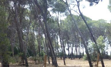 Parc Samà de Montbrió del Camp