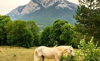 El Pedraforca, una de les muntanyes més emblemàtiqques de Catalunya.
