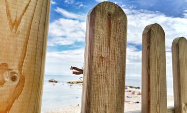 Dinant amb companyia a la platja Morro de gos