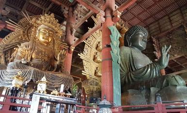 12.NARA   Gran buda Daibutsu uno de los budas en bronce más grandes del mundo tiene una altura de 14.98 y pesa unas 500 toneladas