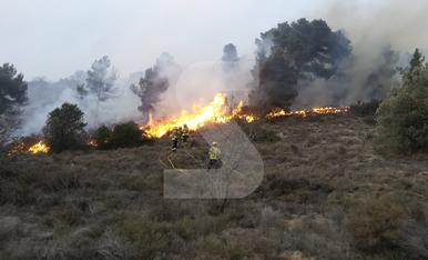 © Primers incendis del 2018 a Lleida