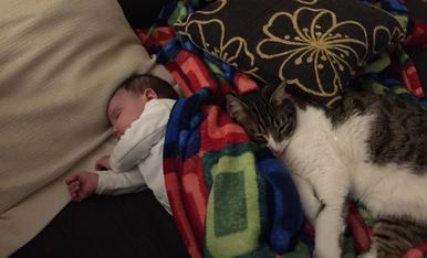 La petita Sofia de dos mesos dorm amb el seu gatet!!!