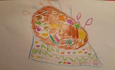 L'Aran te 3 anys i ha decidit que vol una mona de pasqua amb molts colors i moltes plomes.
