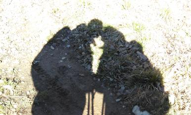 El Petó....Voler i ser estimat, on un sol petó porta al cor, els seus suaus batecs, per tota una eternitat...Foto realitzada al camp, aprofitant les nostres ombres, per fer aquesta foto artistica i romantica.