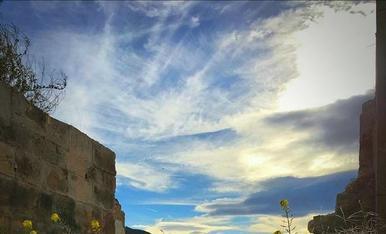 Sol i núvols, flor groga