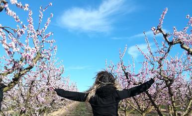 Raquel disfrutando del precioso paisaje de los arboles frutales d'Aitona!