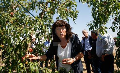 La consellera Jordà visita la zona afectada per les pedregades