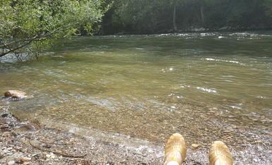A Tragó i rodalies ens nem a refresca al riu segre.Magda Bach
