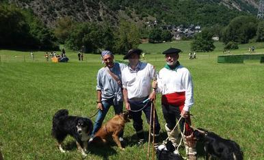32º Concurso de Perros Pastores de Llavorsí
