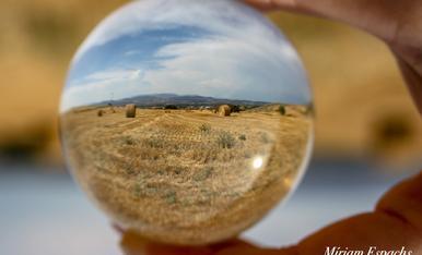 Paissatges d'estiu a través de la bola del futur... camps de blat segats a Montgai