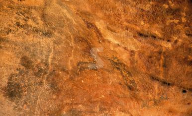 © Pintures rupestres de fa 10.000 anys al Cogul
