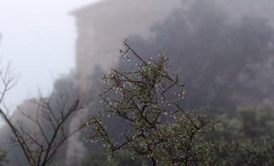 El fred i la boira comencen a calardes de l'ermita de Montelegre