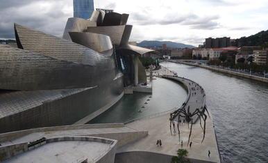 Façana del Famós Museu d' Art Contemporanu Guggenheim de Bilbao, en la part que dona a la ría.