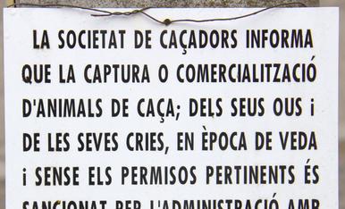 En una riera de la comarca d'Osona
