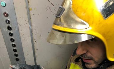 Espectacular rescat d'una cigonya ferida atrapada en un parallamps a Pardinyes