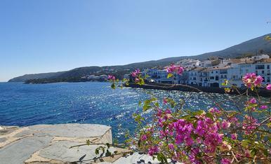 En primer pla, unes flors colorides i al fons, algunes cases del bonic poble de Cadaqués.