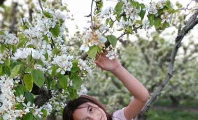 Mi flor entre las flores!!