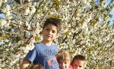 Els meus amors als cirerers florits de casa nostra