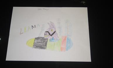 Iker, 9 anys, la seva mona, li agradaría de la Llama del Fornite.