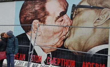 Pintor Xavier Gose nº7 2-4, 25005 lleida. telf; 669746888.  Fem caure el mur desde Berlin