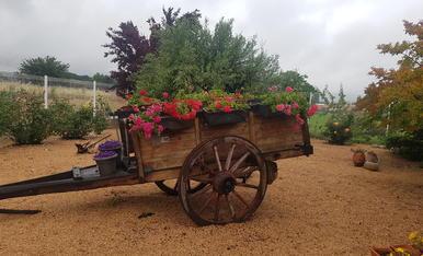un del raco que m'agrada es aquest carro del segle passat i ara  a la primavera ple de flors  fa que sigui un lloc molt especial per mí.