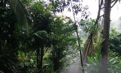 Aguas Termales Volcan Arenal (Costa Rica)