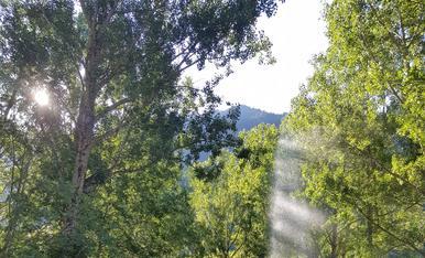 Les meves vacances de relax per caldes de boí amb uns bons paisatge