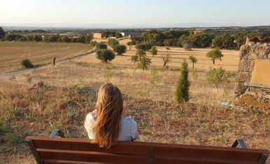 Observant la calma de la Segarra.