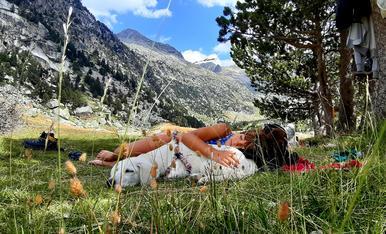 Pau a l'estany del Besiberri. Pirineus de Lleida