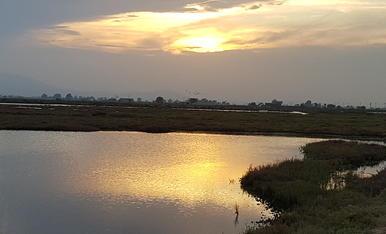 Darrers minuts de sol al Delta