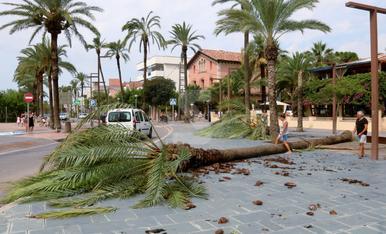 © El Garraf, després de la tempesta