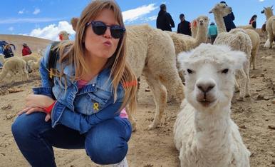 Amb les llames influencers de les Pampas Cañahuas d'Arequipa. (Perú)