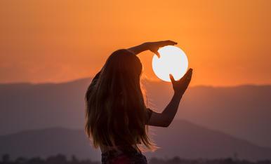 Robant el sol per a l'hivern de Lleida