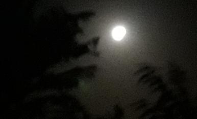Lluna de plena tardor .