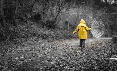 Camins encatifats. Surts a voltar i et trobes tots els camins encatifats, el vent ha fet la seva, la pluja no ens atemoreix, sempre que vagis ben preparat