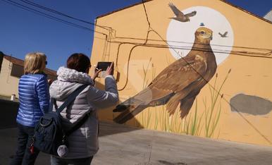 © Las aves del Estany, arte para Ivars