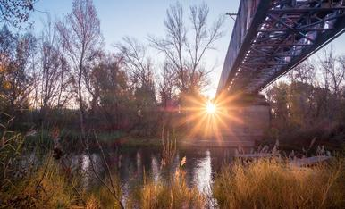 El riu Segre sota el pont de ferro a Gerb, un matí de tardor