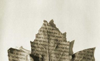 El otoño es para leer.