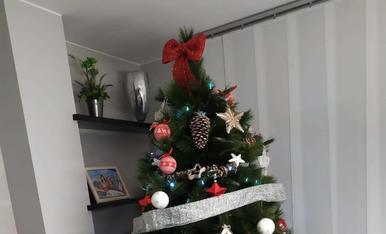Ja és Nadal a casa i aquest any amb un nou membre a la familia!!!