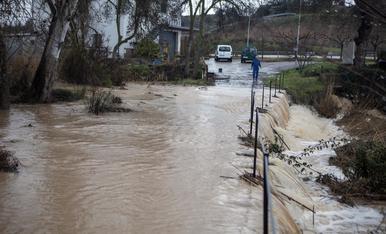 El temporal Gloria a les terres de Lleida