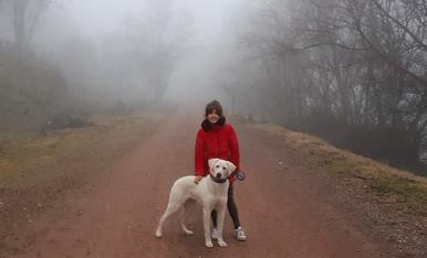 La meva cadellet de deu mesets Bimba i jo. #Bimba&Aurembiaix
