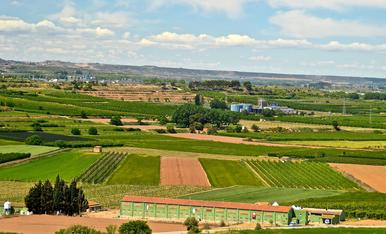 GAP Cooperativa, ramaders i ramaderes compromeses amb el territori i les persones