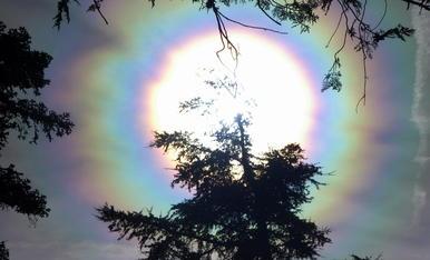 Corona solar. Amb un dia de núvols prims i molt de vent, vaig tenir la sort de poguer fotografia aquesta espectacular corona solar des de Reus.Tarragona. 26-2-2020